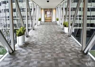 8 Greenway Plaza Skybridge